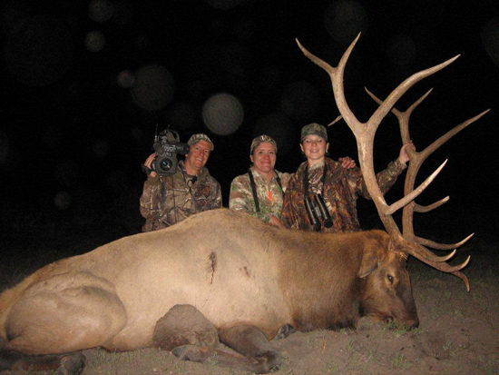 Field Dressing An Elk In New Mexico