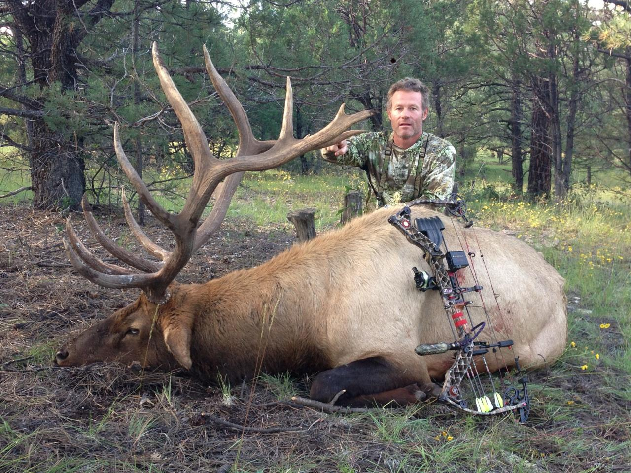Elk Hunting in New Mexico