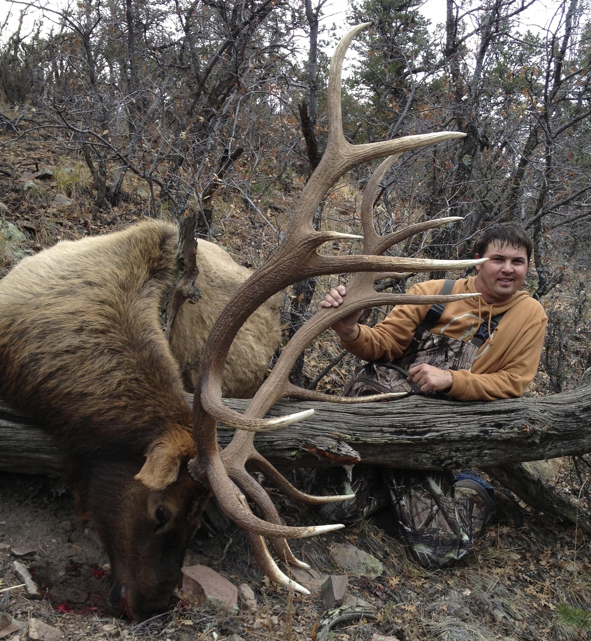 Hunters Ridge Kansas: Elk Hunting In New Mexico