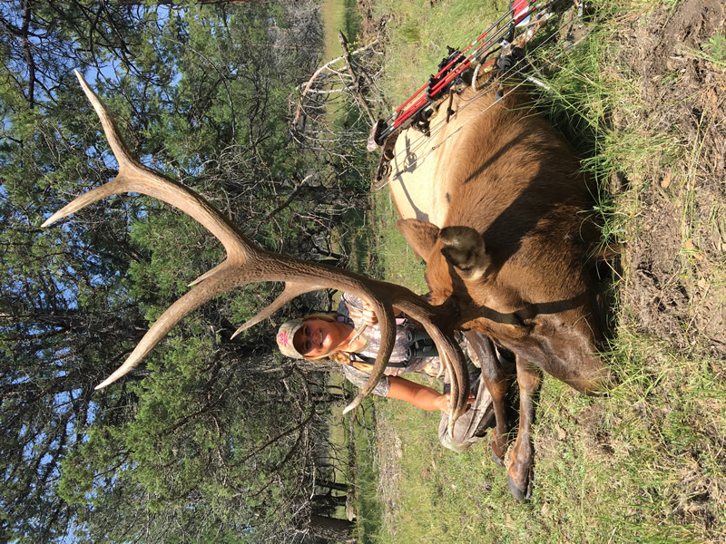 new-mexico-hunting